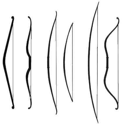 Comment choisir une branche d'arc?