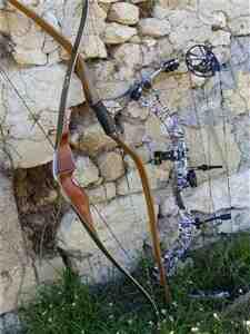 Comment choisir un arc Longbow ?