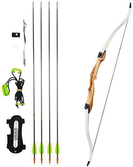 Quel est le meilleur arc de chasse?