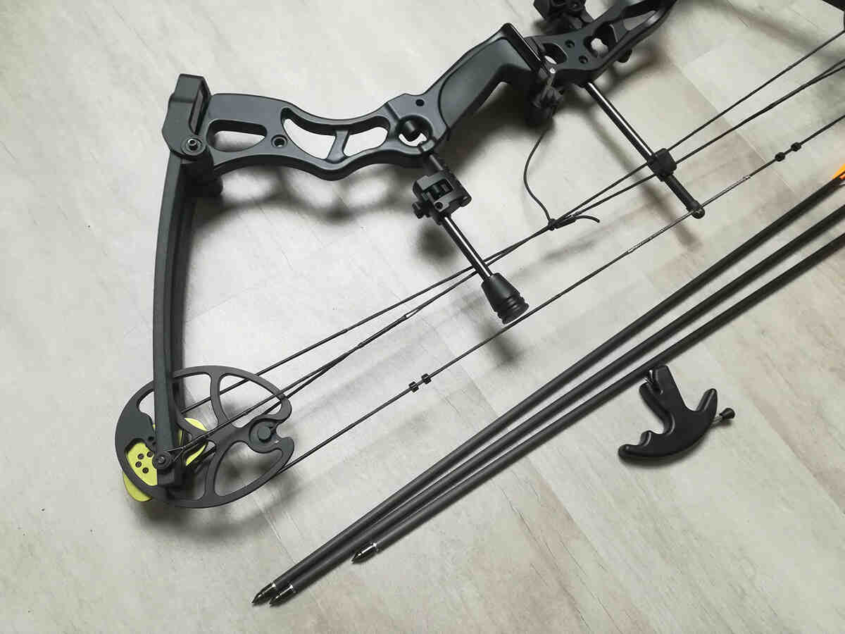 Quel arc classique pour la chasse?
